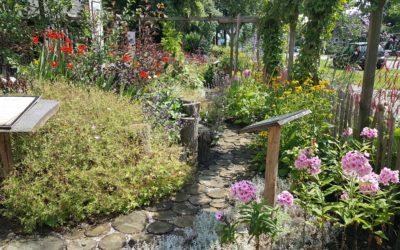 Willemsoord – Natuurtuin